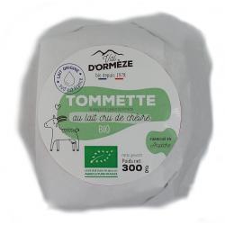 Seitan préparé (500 g)