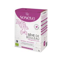 Muffin myrtilles (par 2)