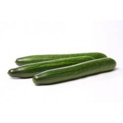 Pizza végétarienne non prédécoupée (1kg460)