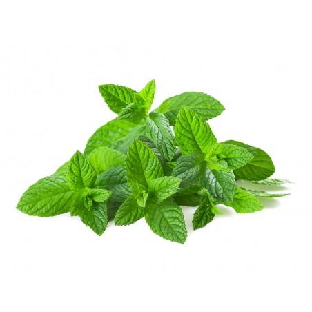 Pizza jambon fromage non prédécoupée (1kg550)