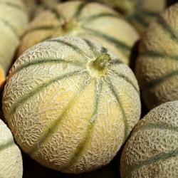 Raviolis d'épeautre aux légumes VEGAN 250 gr