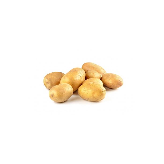 PDT Agata (10kg) - Catégorie ll